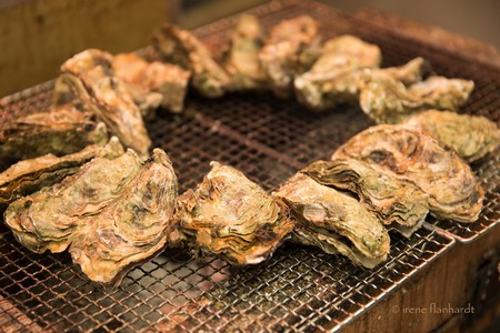 grilled oysters | george, south africa | 2016