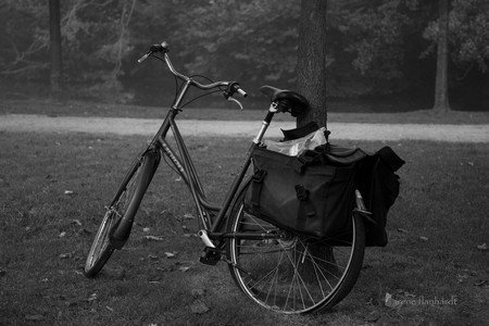 bicycle #4 | amsterdam | 2014